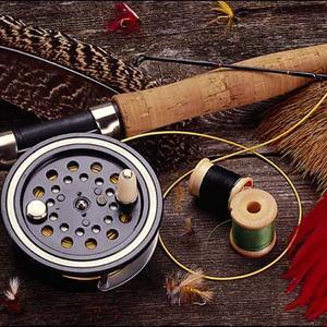 Охотничьи и рыболовные магазины Поворино